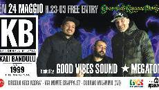 DancehallReggaeParty w\ KaliBandulu/GoodVibesSound/Megatone